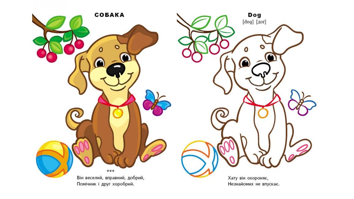 Свійські тварини (4+). Подивись і розфарбуй