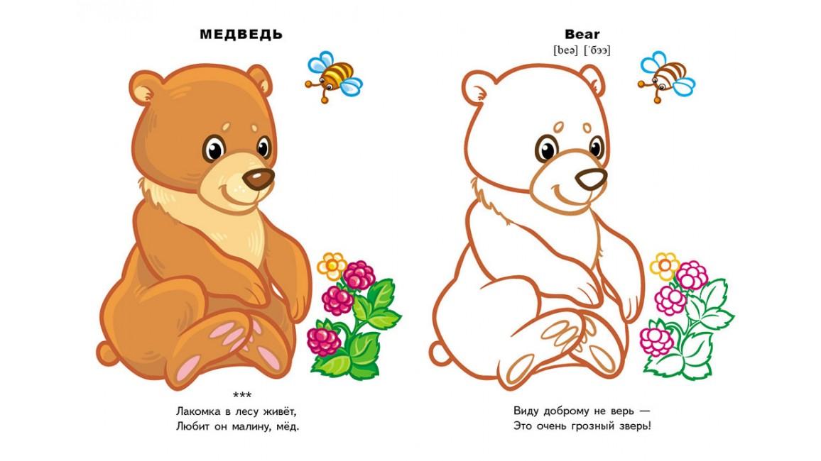 Лесные животные (4+). Посмотри и раскрась