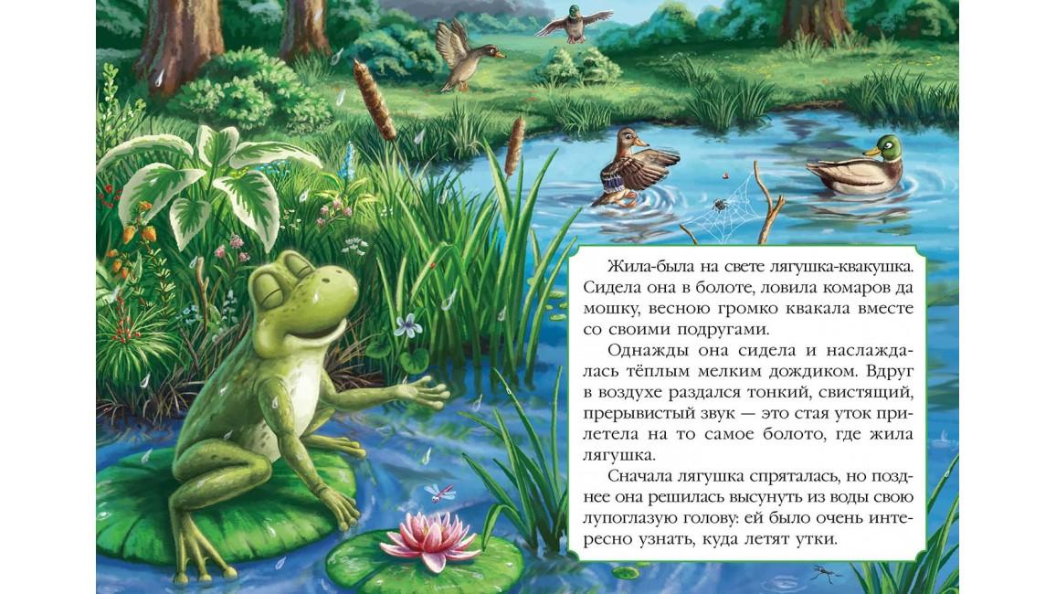 Лягушка-путешественница. Книжка-сказка