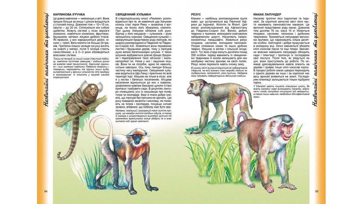 Енциклопедія тварин Наші сусіди. Цікавий світ