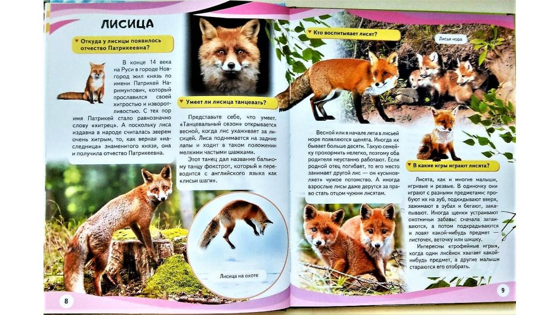 Мамы и малыши (Тигр). Энциклопедия в вопросах и ответах
