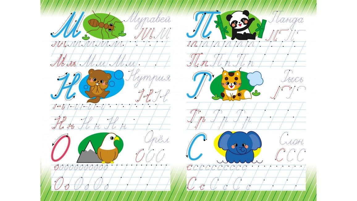 Азбука. Прописные буквы. Многоразовые прописи