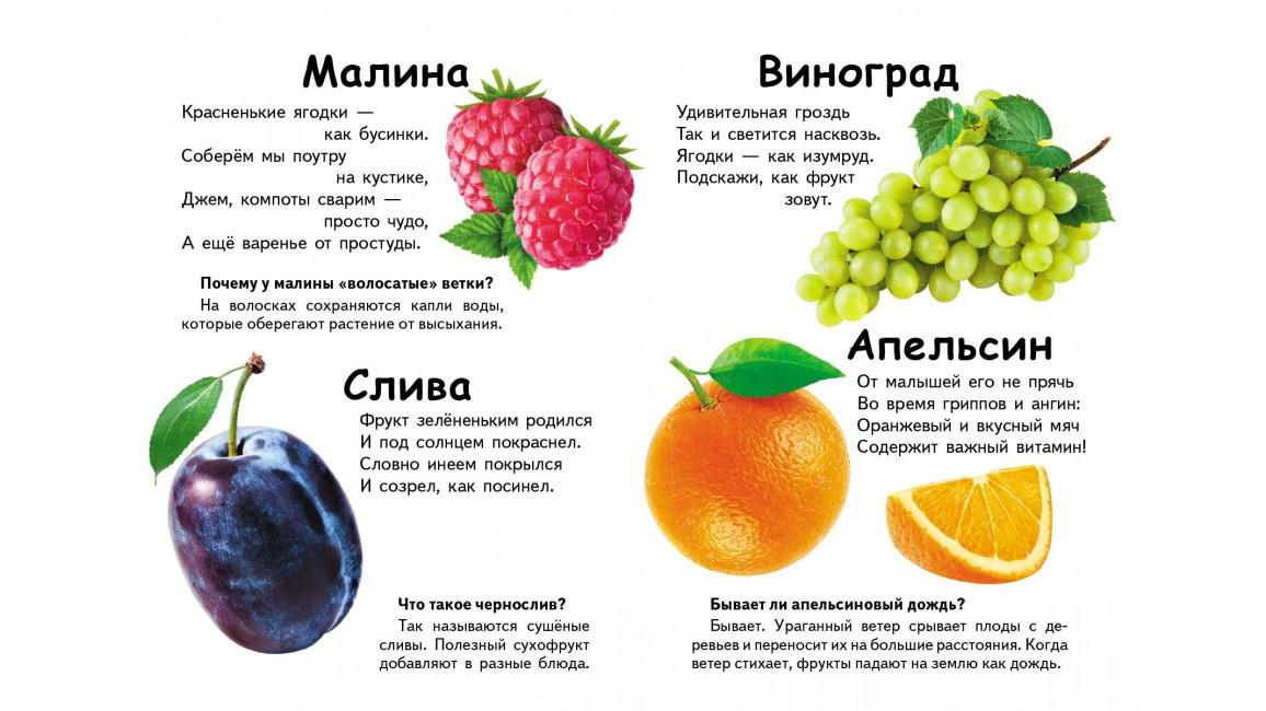 Что это? Овощи, фрукты и ягоды. Вопросы и ответы