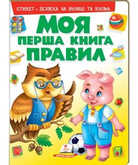 Моя перша книга правил
