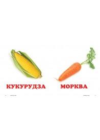 Овочі. Книжка-малятко