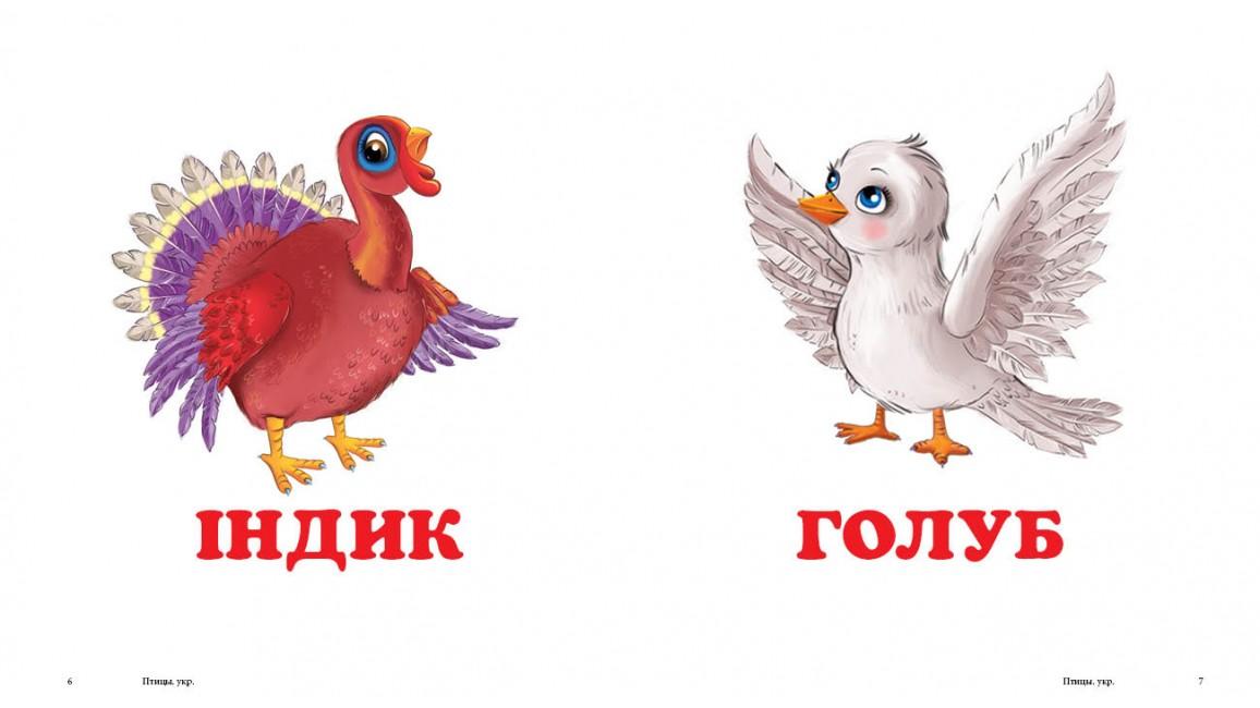 Птахи. Книжка-малятко
