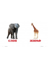 У зоопарку. Книжка-малятко