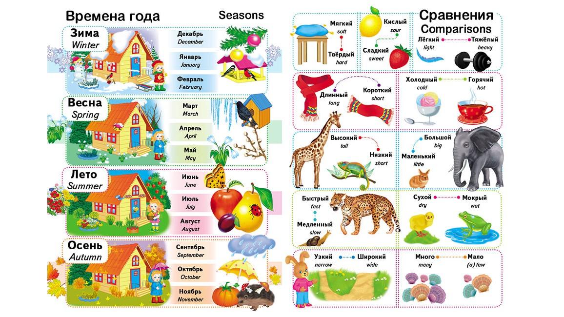 Первые знания малыша + английский