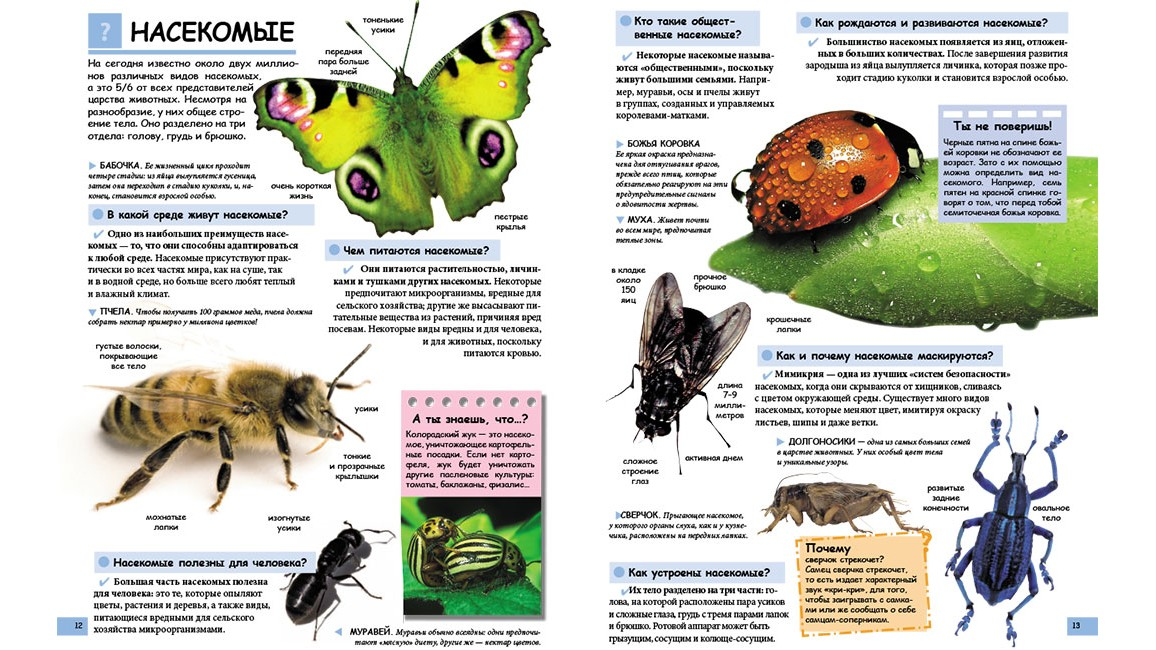 Иллюстрированная детская энциклопедия в вопросах и ответах