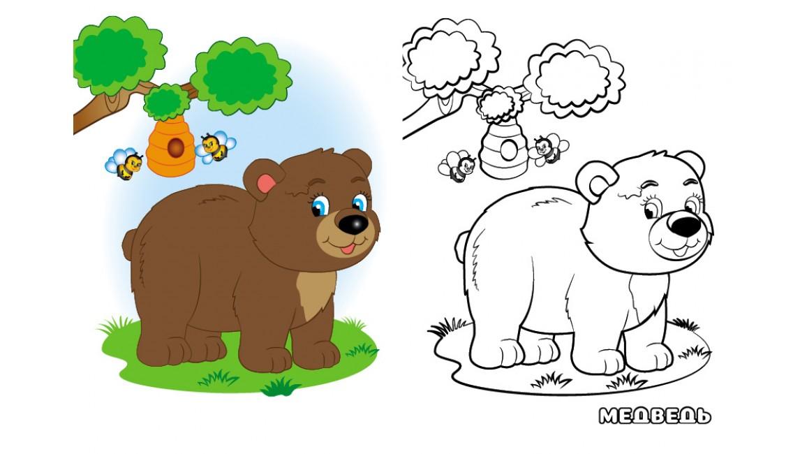Лесные животные. Посмотри и раскрась