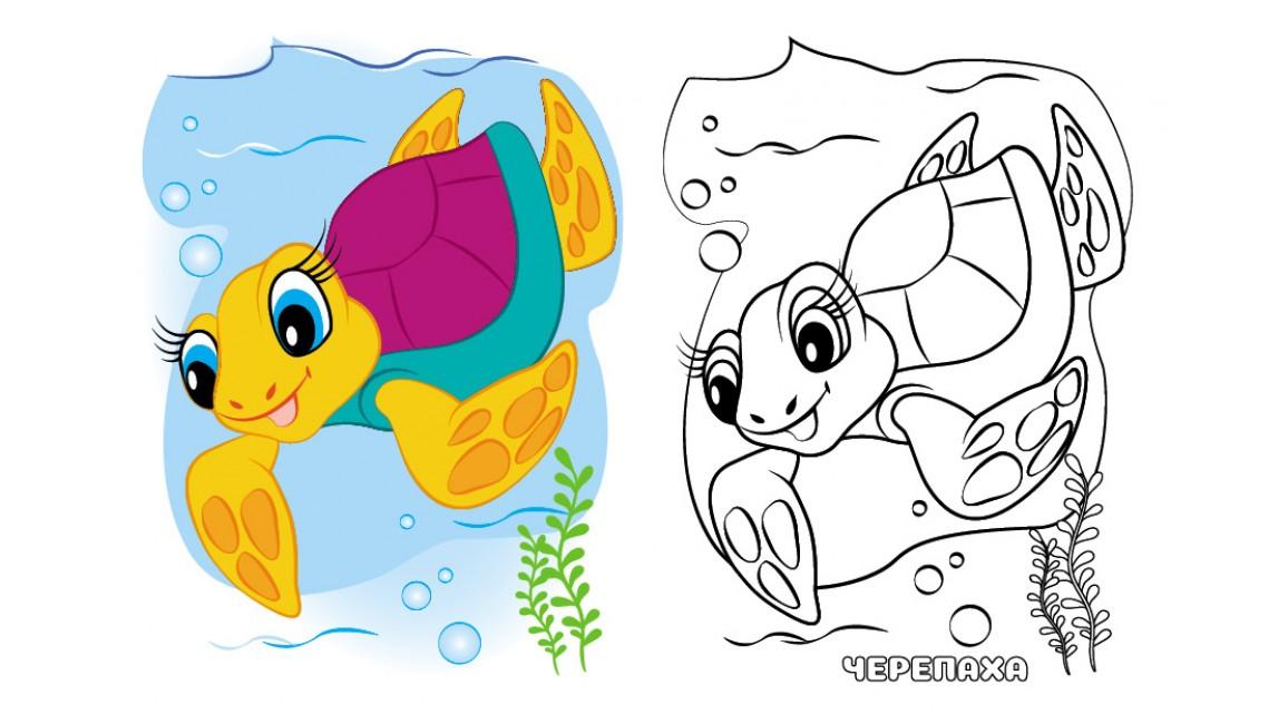 Морские животные. Посмотри и раскрась